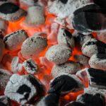 Tag 1 der Eröffnungswoche: Grilltipps für den Kohlegrill